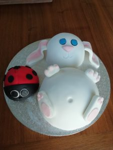 Rabbit and Ladybird Cakes