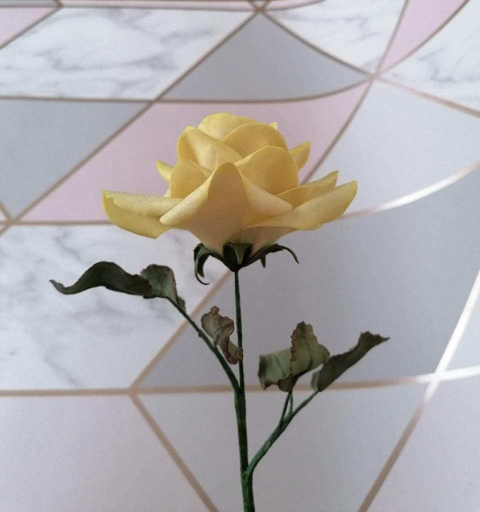 Yellow Avalanche Rose